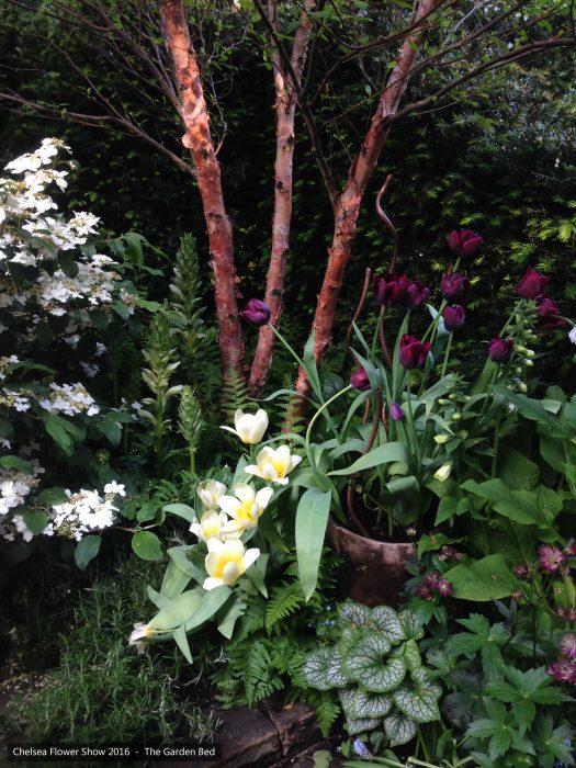 57-chelsea-flower-show-2016-garden-bed-planting-tulips