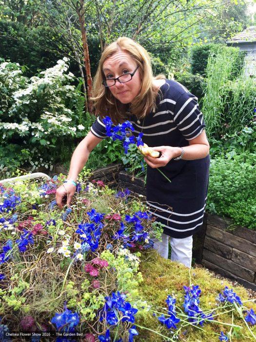 58-chelsea-flower-show-2016-garden-bed-floristry