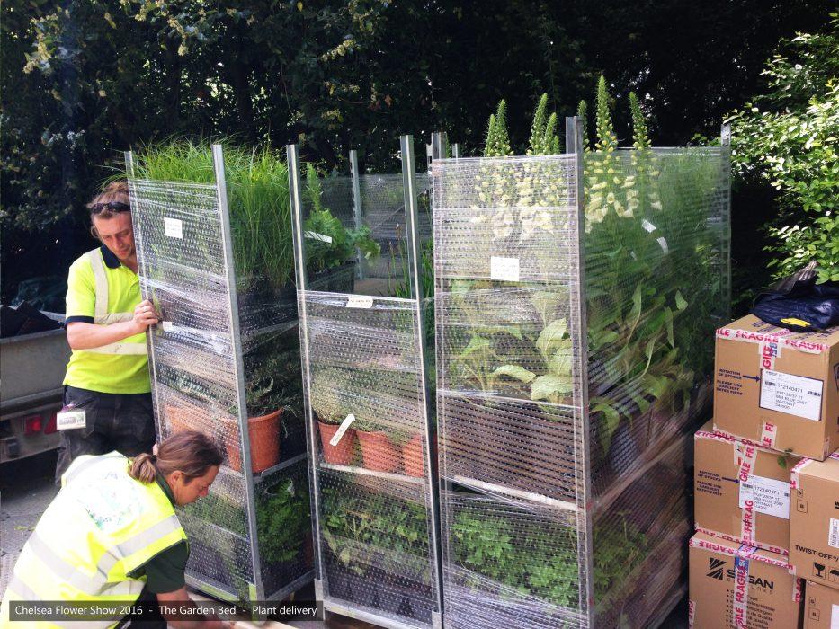 21-chelsea-flower-show-2016-garden-bed-plants
