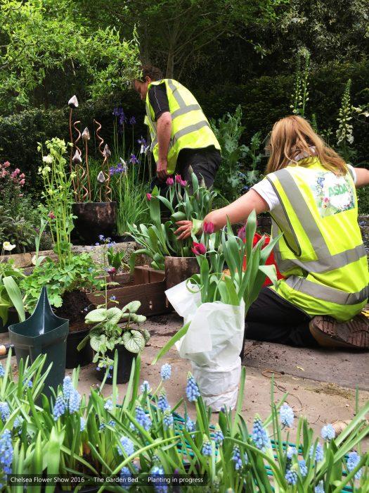 25-chelsea-flower-show-2016-garden-bed-planting