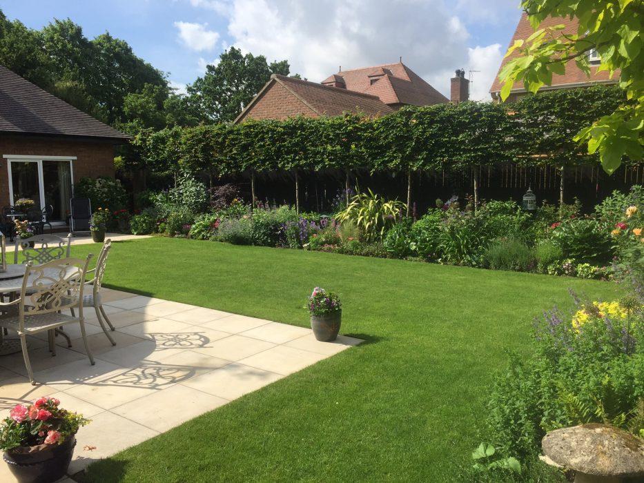 08 simple garden plants border pleached hedge patio welch landscape design
