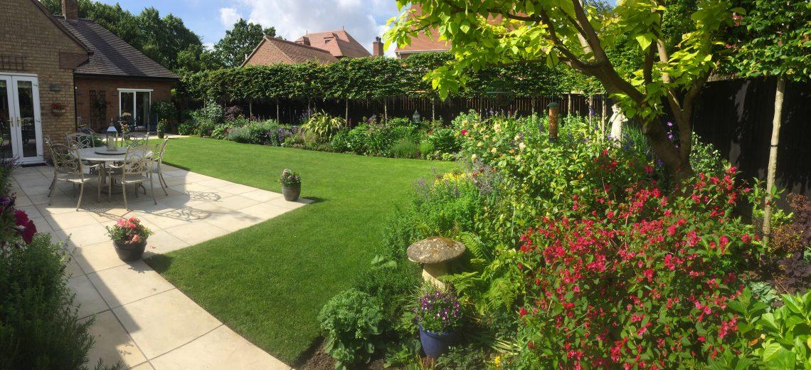 09 simple garden border planting Indian bean tree Catalpa bignoniodes patio pleached hedge welch landscape design