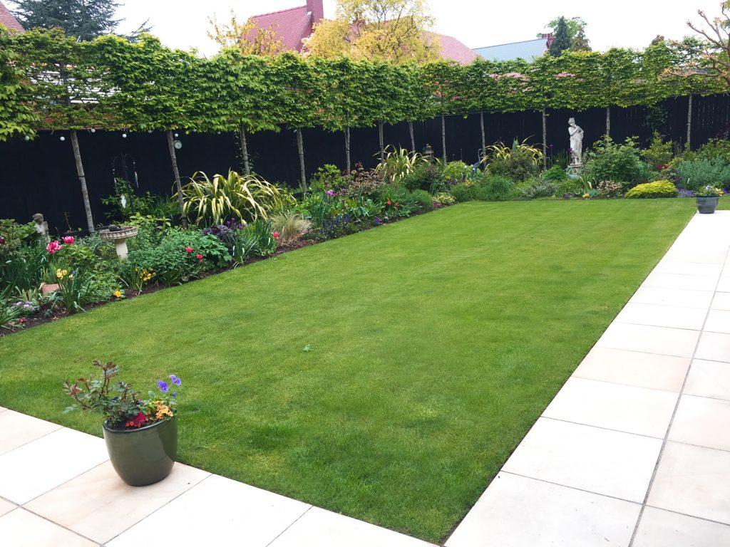 11 Simple Garden Lawn Path Patio Pots Pleached Hedge Border Plants